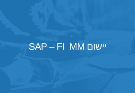 יישום SAP – FI MM